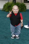 LOS ANGELES, CA - JULY 06:  Verne Troyer at the premiere of 'The Zookeeper' at the Regency Village T