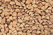 Firewood For The Winter, Stacks Of Firewood, Pile Of Firewood poster
