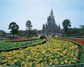 Theme Park Garden