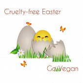 image of animal cruelty  - Happy Cruelty - JPG