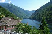Summer Swiss Alps