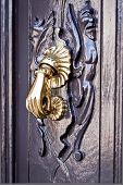 Aldrava de bronze brilhante sobre a porta de madeira