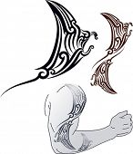 Maori styled tattoo pattern in shape of manta ray profile. Fit for shoulder and forearm. Editable vector format EPS 8.0