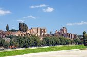 The Circus Maximus And Paltine Hill