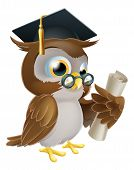 stock photo of convocation  - An illustration of a cute owl in glasses and graduate or convocation hat holding a rolled up scroll diploma certificate or other qualification - JPG