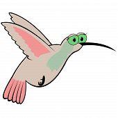 Beija-flor Cartoon ilustração em vetor