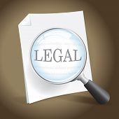 Examing A Legal Document