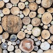 Background Of Dry Logs