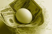 Egg And Money