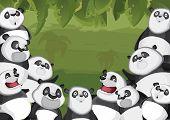 Pandas in jungle background