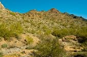foto of piestewa  - Beautiful Piestewa  - JPG