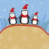 Penguine in Christmas Backgound
