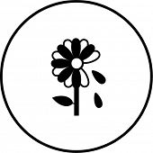 flower with falling petals symbol