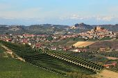 View of hills with green vineyards and small town of Roddi on background in Piedmont, Northern Italy