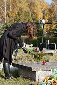 Widow At Graveyard In Fall
