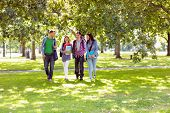 pic of grassland  - Full length of a group of young college students walking in the park - JPG