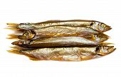 Smoked Sprat Isolated