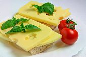 Two Sandwiches with Cheese, Tomatoes and Basil