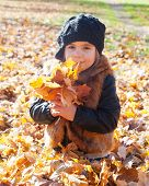 little girl sits on a grass and holds autumn leaves of a maple