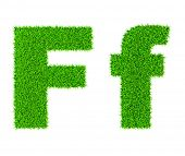 Grass letter F - ecology eco friendly concept character type