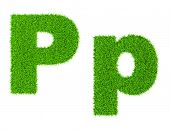 Grass letter P - ecology eco friendly concept character type