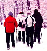 Nordic walking in the wintry park