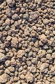 picture of slag  - Volcanic slag at the foot of the Racos volcano Romania - JPG