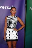 LAS VEGAS - APR 8:  Mel B, Mel Brown at the NBCUniversal Summer Press Day at Huntington Langham Hote