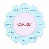 Cricket Circular Word Concept