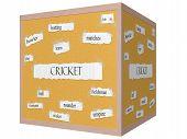Cricket 3D Cube Corkboard Word Concept