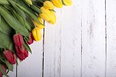 Tulips On White Wooden Planks Eves