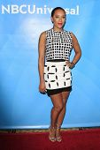 PASADENA - APR 8: Mel B at the NBC/Universal's 2014 Summer Press Day held at the Langham Hotel on Ap
