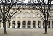 Garden of the Palais Royal in winter (Paris France)