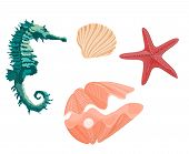 picture of mollusca  - Collection marine life seahorse starfish and seashell svector illustration  without gradients - JPG