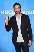 PASADENA - APR 8: Tom Ellis at the NBC/Universal's 2014 Summer Press Day held at the Langham Hotel o