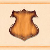 Wooden vintage grunge shield