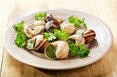 image of escargot  - plate of escargots on a wooden table - JPG