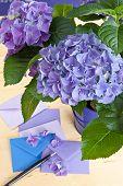 Blue Hydrangea In Vintage Pot
