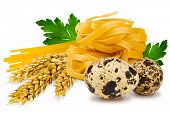 pic of egg noodles  - egg noodles pasta ears of wheat fresh parsley leaf and quail egg on a white background - JPG