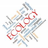 Ecology Word Cloud Concept Angled