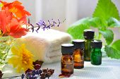 stock photo of massage oil  - essential oils for aromatherapy treatment with herbs and flowers - JPG