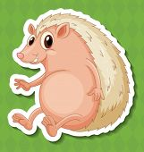 Illustration of a hedgehog with background