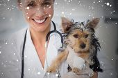 Composite image of smiling female vet holding cute puppy against snow