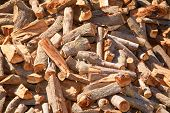 Fire wood piled high outdoors in the sun
