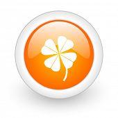 four-leaf clover orange glossy web icon on white background