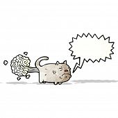 image of fart  - farting cat cartoon - JPG