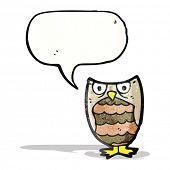 hooting little owl cartoon