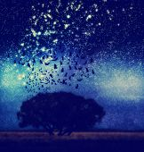 a tree at night with birds and stars toned with a retro vintage instagram filter effect