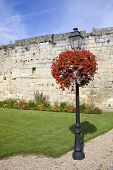 small garden at saint emilion, aquitaine, France