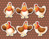 Illustration of chickens with different poses